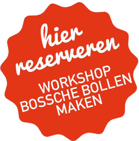 workshop bossche bollen
